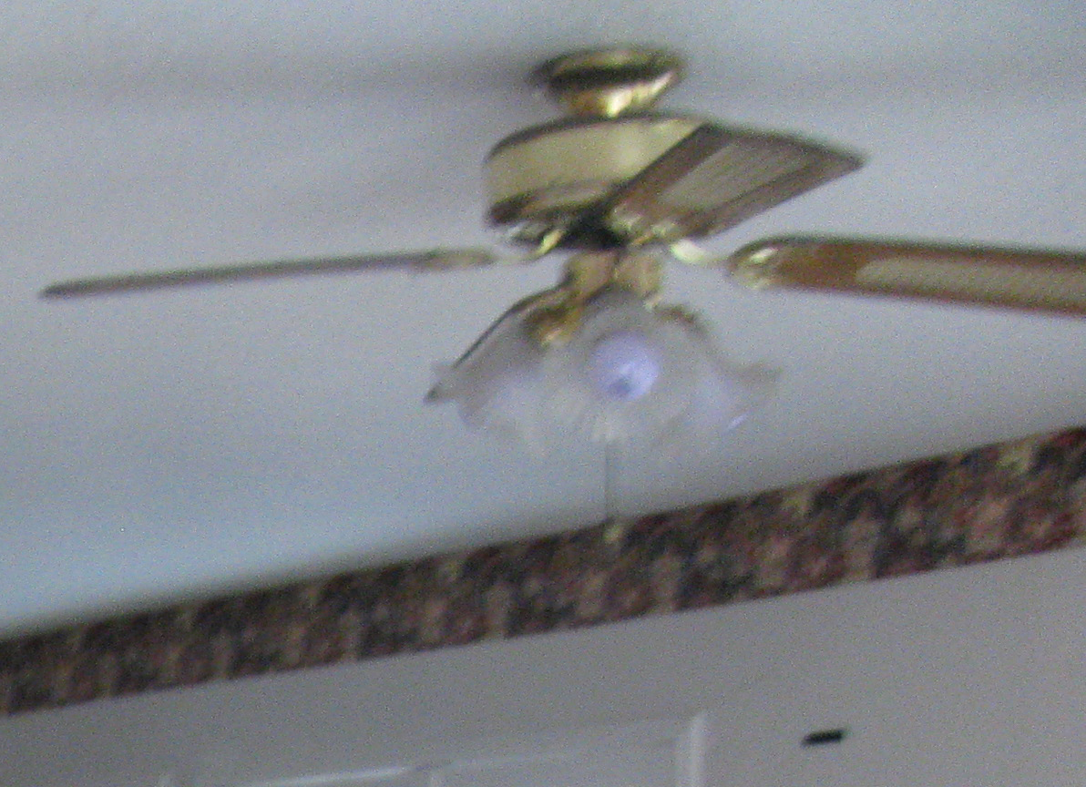Previous Ceiling Fan