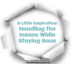 A Little Inspiration Handling the Insane While Staying Sane